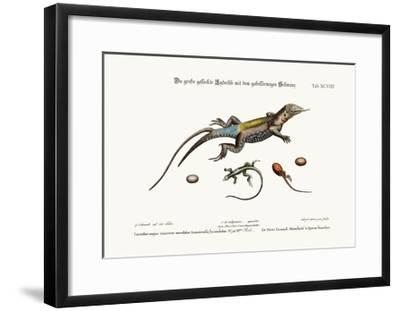 The Great Spotted Lizard with a Forked Tail, 1749-73-George Edwards-Framed Giclee Print