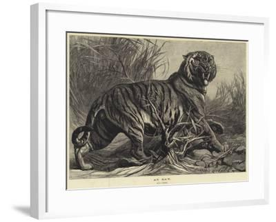 At Bay-George Bouverie Goddard-Framed Giclee Print