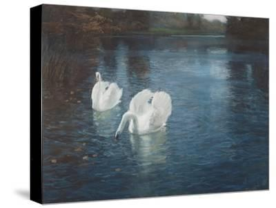 Swans on the River, C.1880-Fritz Thaulow-Stretched Canvas Print