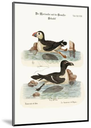The Puffin, and the Razor-Bill, 1749-73-George Edwards-Mounted Giclee Print