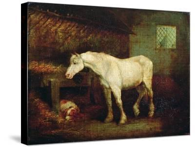 An Old Grey Mare at a Manger-George Morland-Stretched Canvas Print