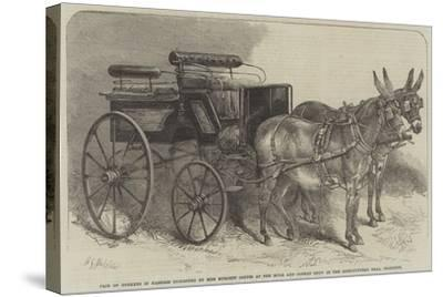 Pair of Donkeys in Harness Exhibited by Miss Burdett Coutts at the Mule and Donkey Show in the Agri-Harden Sidney Melville-Stretched Canvas Print