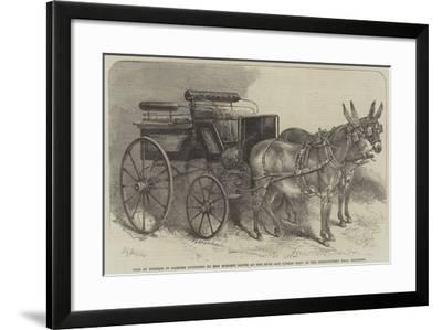 Pair of Donkeys in Harness Exhibited by Miss Burdett Coutts at the Mule and Donkey Show in the Agri-Harden Sidney Melville-Framed Giclee Print
