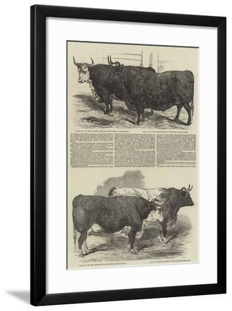 The Annual Exhibition of the Smithfield Club-Harrison William Weir-Framed Giclee Print