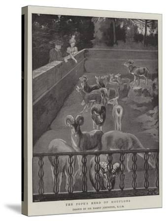 The Pope's Herd of Mouflons-Harry Hamilton Johnston-Stretched Canvas Print