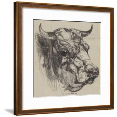 The Best Short-Horned Bull-Harrison William Weir-Framed Giclee Print