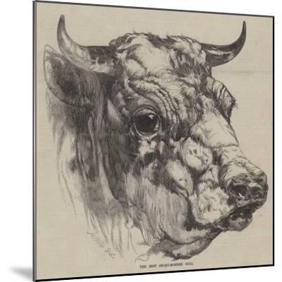 The Best Short-Horned Bull-Harrison William Weir-Mounted Giclee Print