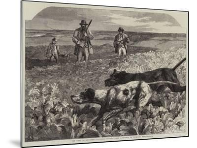The First of September, Partridge-Shooting-Harrison William Weir-Mounted Giclee Print