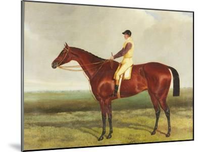 Bee's Wing', C.1840-45-Harry Hall-Mounted Giclee Print