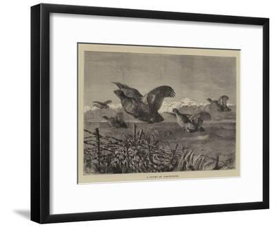 A Covey of Partridges-Harrison William Weir-Framed Giclee Print