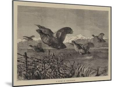 A Covey of Partridges-Harrison William Weir-Mounted Giclee Print