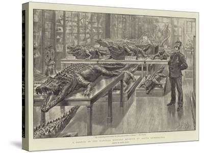 A Sketch in the Natural History Museum at South Kensington-Henri Lanos-Stretched Canvas Print