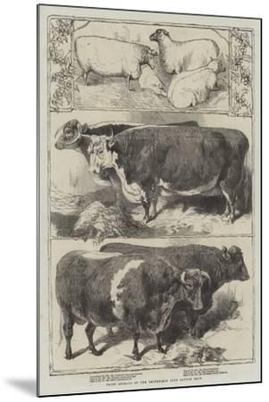 Prize Animals of the Smithfield Club Cattle Show-Harrison William Weir-Mounted Giclee Print
