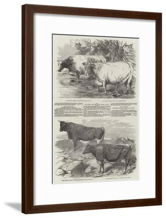Exhibition of the Royal Agricultural Society of England-Harrison William Weir-Framed Giclee Print