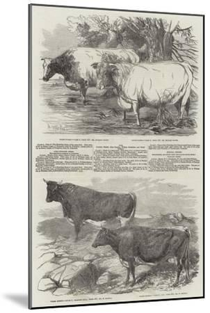 Exhibition of the Royal Agricultural Society of England-Harrison William Weir-Mounted Giclee Print