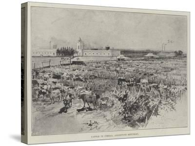 Cattle in Corral, Argentine Republic-Henry Charles Seppings Wright-Stretched Canvas Print