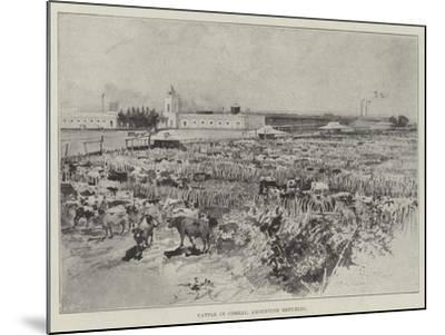 Cattle in Corral, Argentine Republic-Henry Charles Seppings Wright-Mounted Giclee Print