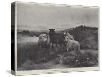 Lost Sheep-Henry William Banks Davis-Stretched Canvas Print