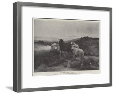 Lost Sheep-Henry William Banks Davis-Framed Giclee Print
