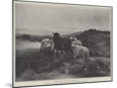 Lost Sheep-Henry William Banks Davis-Mounted Giclee Print