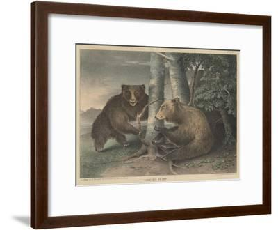 Grizzly Bears-J. R. Peale-Framed Giclee Print