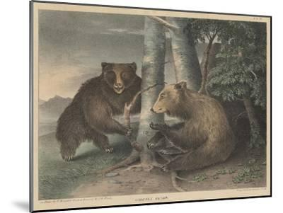 Grizzly Bears-J. R. Peale-Mounted Giclee Print