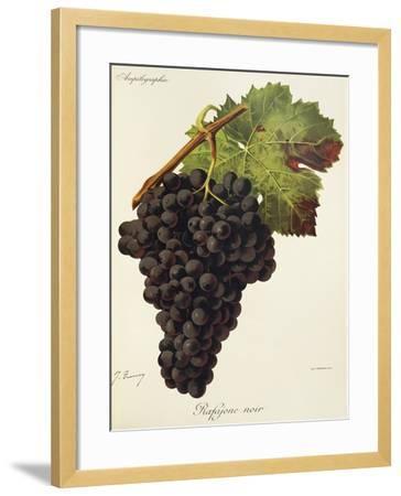Rafajone Noir Grape-J. Troncy-Framed Giclee Print