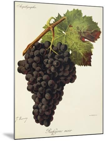 Rafajone Noir Grape-J. Troncy-Mounted Giclee Print