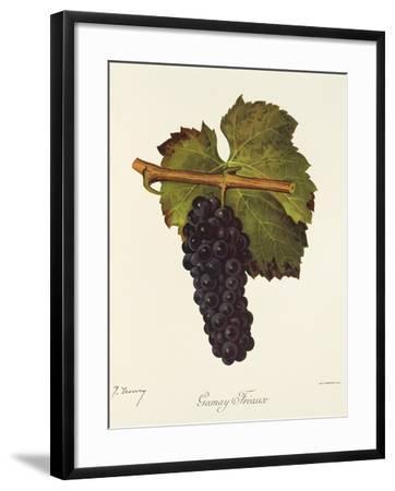 Gamay Freaux Grape-J. Troncy-Framed Giclee Print