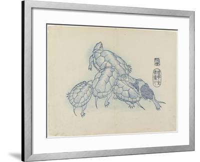 Turtles, C. 1830- Hogyoku-Framed Giclee Print