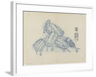 Turtles, C. 1830- Hogyoku-Framed Giclee Print