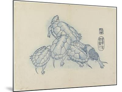 Turtles, C. 1830- Hogyoku-Mounted Giclee Print