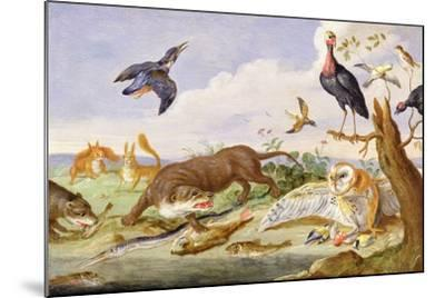 An Otter and an Owl Guarding their Catches-Jan van Kessel the Elder-Mounted Giclee Print