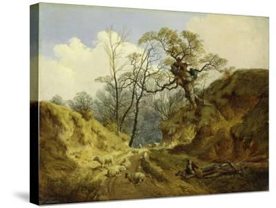Crown Point, Whitlingham, Near Norwich, 1855-John Berney Ladbrooke-Stretched Canvas Print