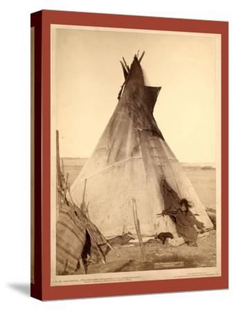 A Young Oglala Girl Sitting in Front of a Tipi-John C. H. Grabill-Stretched Canvas Print
