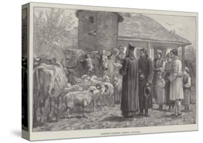 Blessing Domestic Animals, Bulgaria-Johann Nepomuk Schonberg-Stretched Canvas Print