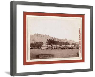 Freighting in the Black Hills. Photographed Between Sturgis and Deadwood-John C. H. Grabill-Framed Giclee Print