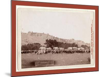 Freighting in the Black Hills. Photographed Between Sturgis and Deadwood-John C. H. Grabill-Mounted Giclee Print