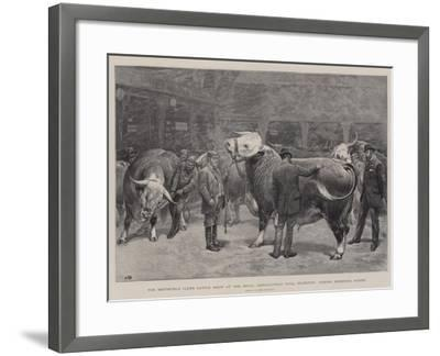 The Smithfield Club's Cattle Show at the Royal Agricultural Hall-John Charlton-Framed Giclee Print