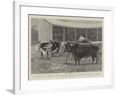 The Queen's Sale of Shorthorn, Hereford and Devon Cattle at the Prince Consort's Shaw Farm, Windsor-John Charles Dollman-Framed Giclee Print