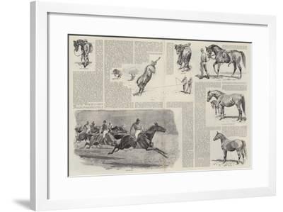 The Career of a Racehorse-John Charlton-Framed Giclee Print