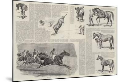 The Career of a Racehorse-John Charlton-Mounted Giclee Print
