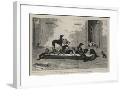 A Table D'Hote at the Home for Lost Dogs, Battersea-John Charles Dollman-Framed Giclee Print