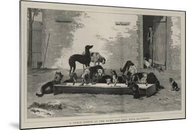 A Table D'Hote at the Home for Lost Dogs, Battersea-John Charles Dollman-Mounted Giclee Print
