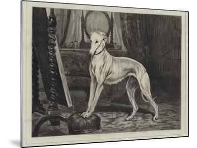 Vanity-John Charlton-Mounted Giclee Print