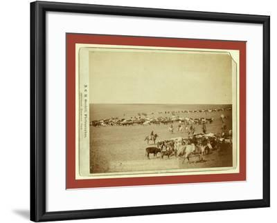 Round-Up Scenes on Belle Fouche [Sic] in 1887-John C. H. Grabill-Framed Giclee Print