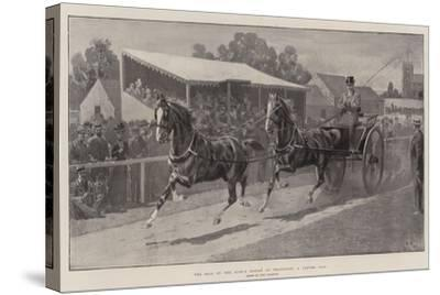 The Sale of the King's Horses at Wolferton, a Tandem Pair-John Charlton-Stretched Canvas Print