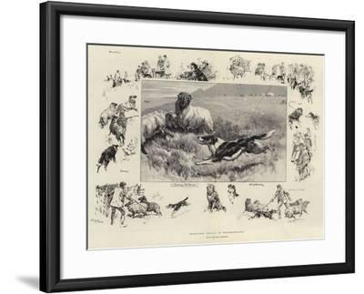 Sheep-Dog Trials in Westmoreland-John Charlton-Framed Giclee Print