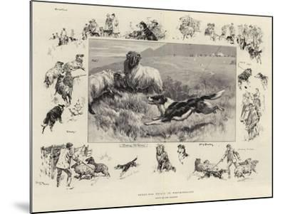 Sheep-Dog Trials in Westmoreland-John Charlton-Mounted Giclee Print