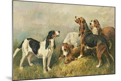 Hounds with a Hare-John Emms-Mounted Giclee Print